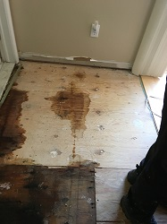 Water Damage Restoration Soho